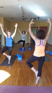 Lisa leading the class in vrksasana